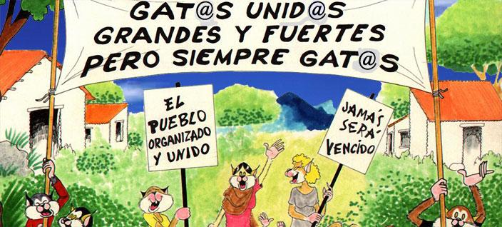 31-Gatos-unidos704x318